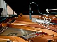 fluegel-mikrofonierung